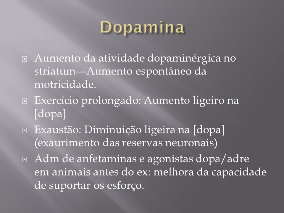 Dopamina Aumento da atividade dopaminérgica no striatum---Aumento espontâneo da motricidade. Exercício prolongado: Aumento ligeiro na [dopa]